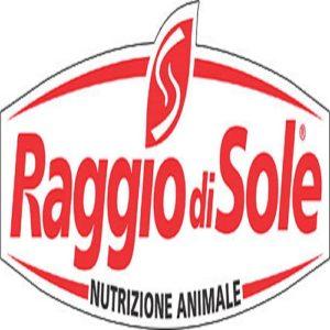 rds-logo-610